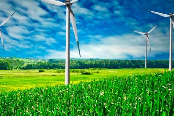¿Es posible generar energía eólica con instrumentos naturales?